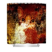 Hidden Shower Curtain by Andee Design
