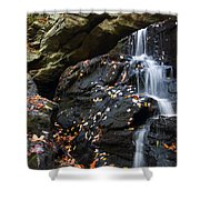 Hidden Falls 1 Shower Curtain