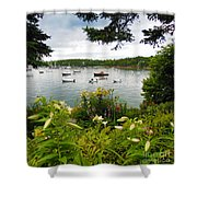 Hidden Lily Garden  Shower Curtain