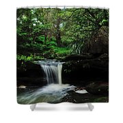 Hidden Rainforest Shower Curtain