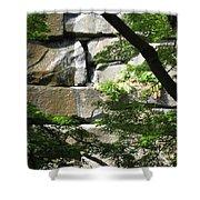 Hidden Waterfall Shower Curtain