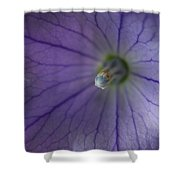 Hidden World  Shower Curtain