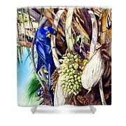 Hide-n-seek Hyacinths Shower Curtain