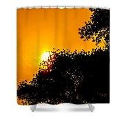 Hide N Seek Shower Curtain