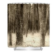 Hiding In The Trees By Diana Sainz Shower Curtain