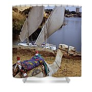 High Angle View Of A Camel Resting Shower Curtain