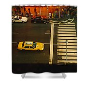 High Angle View Of Cars At A Zebra Shower Curtain