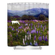 High Country Lupine Dreams Shower Curtain