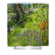 High Country Wildflowers Shower Curtain