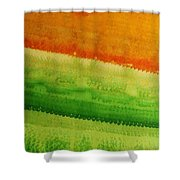 High Desert Original Painting Shower Curtain