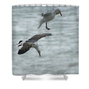 High Dive Shower Curtain