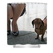 High Heels And A Dachsund Shower Curtain