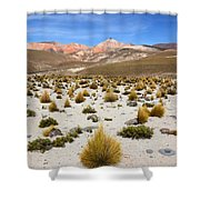 High In The Chilean Altiplano Shower Curtain