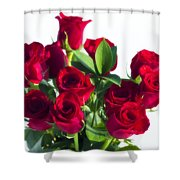 High Key Red Roses Shower Curtain