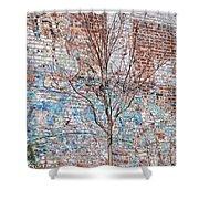 High Line Palimpsest Shower Curtain