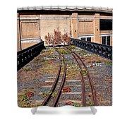 High Line Spur Shower Curtain