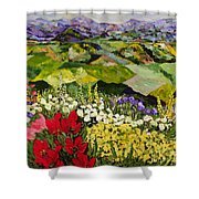 High Mountain Patch Shower Curtain