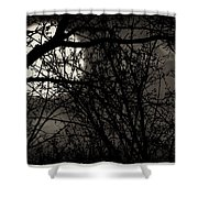 High Noon At Midnight Shower Curtain