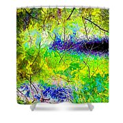 High Street Decor 12 Shower Curtain