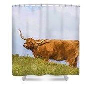 Highland Cow Watercolour Shower Curtain