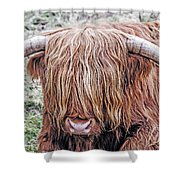 Highlands Coo Shower Curtain