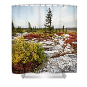 Highlands Of West Virginias Dolly Sods Shower Curtain