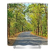 Highway In The Forest Shower Curtain
