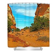 Hiking Between Massive Needles In Needles District Of Canyonlands National Park-utah Shower Curtain