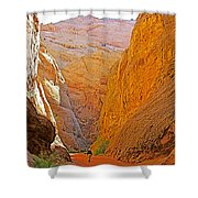 Hiking In Grand Wash In Capitol Reef National Park-utah Shower Curtain