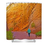 Hiking On Capitol Gorge Pioneer Trail In Capitol Reef National Park-utah Shower Curtain