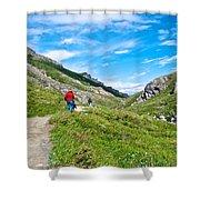 Hiking On Savage River Trail In Denali Np-ak    Shower Curtain