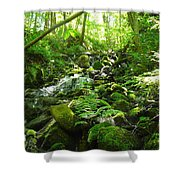 Hiking The Falls Shower Curtain