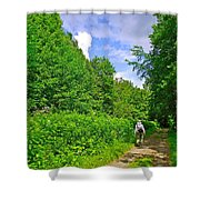 Hiking Trail Along Rivier Du Nord In The Laurentians North Of Montreal-qc Shower Curtain