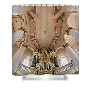 Hildebrandt Organ Naumburg Shower Curtain