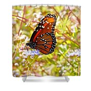 Hill Country Butterfly Shower Curtain