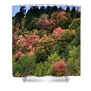 Hill Side Colors Shower Curtain