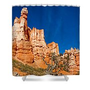 Hillside Carvings Shower Curtain
