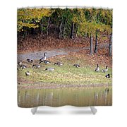 Hillside Of Canadian Geese Shower Curtain