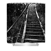 Hillside Stairs Shower Curtain