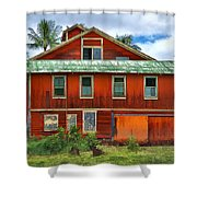 Hilo Town House Shower Curtain