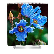 Himalayan Blue Poppy Flower Shower Curtain