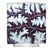 Himalayas Shower Curtain