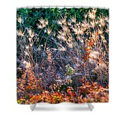 Hint Of Fall Colors 15813 Shower Curtain
