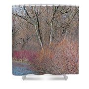 Hint Of Spring Shower Curtain