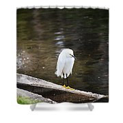 Hippie Bird Shower Curtain