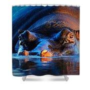 Hippopotamus  At Sunset Shower Curtain