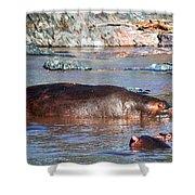 Hippopotamus In River. Serengeti. Tanzania Shower Curtain