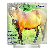 Care About A Horse And He Will Give You His Heart In Return  Shower Curtain