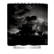 His Majesty  Shower Curtain
