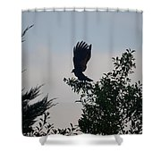 His Morning Stretch Shower Curtain